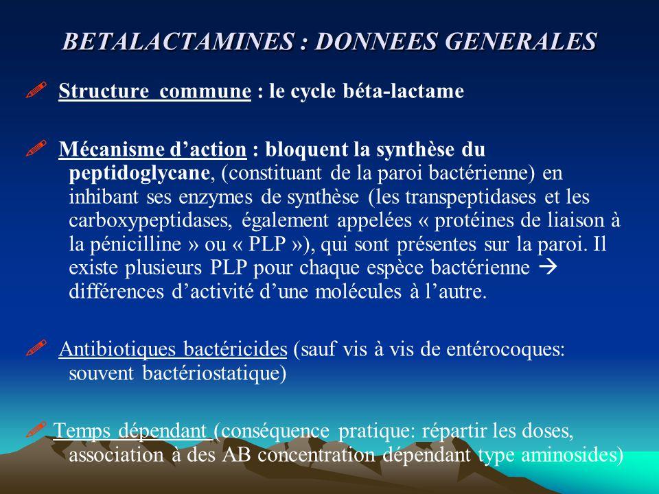 BETALACTAMINES : DONNEES GENERALES  Structure commune : le cycle béta-lactame  Mécanisme d'action : bloquent la synthèse du peptidoglycane, (constit