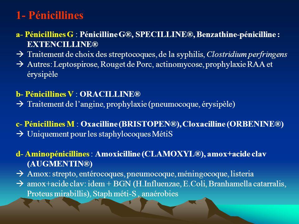 Inhibiteurs des bétalactamases Principales indications Amox+ac clav- : - infections respiratoires hautes ou basses : otites, sinusites, pneumopathies communautaires avec facteurs de risque, surinfection bronchique chronique - salpingites et endométrites à chlamydia (+cyclines) - abcès, phlegmon, cellulites, parodontites -infections de la peau ou des parties molles -infection du tube digestif Ticarcilline+ac clav : –Infections sévères à BGN résistants aux autres bétalactamines Pipéracilline+tazobactam : –Infections sévères en milieu hospitalier BGP et BGN producteurs de bétalactamases sensible à cet inhibiteur ( sauf méningite) Pricipaux ESI Troubles digestifs benins.