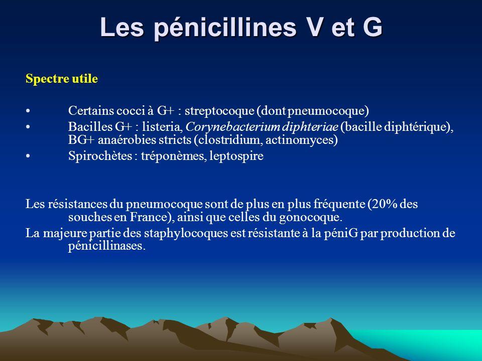 Les pénicillines V et G Spectre utile Certains cocci à G+ : streptocoque (dont pneumocoque) Bacilles G+ : listeria, Corynebacterium diphteriae (bacill