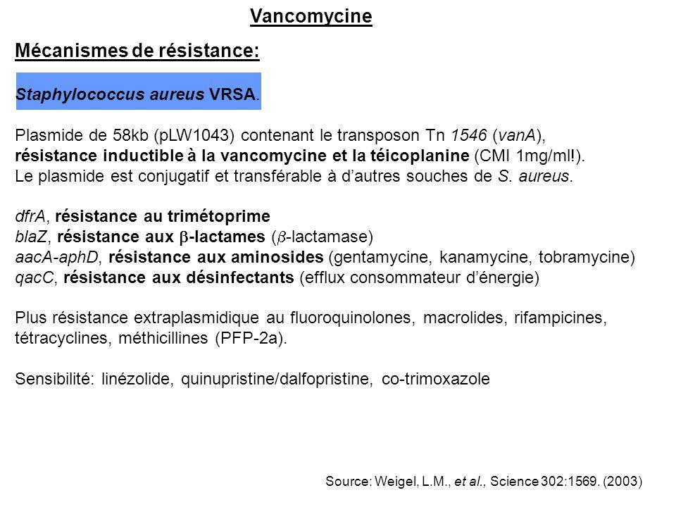 Vancomycine Mécanismes de résistance: Staphylococcus aureus VRSA. Plasmide de 58kb (pLW1043) contenant le transposon Tn 1546 (vanA), résistance induct