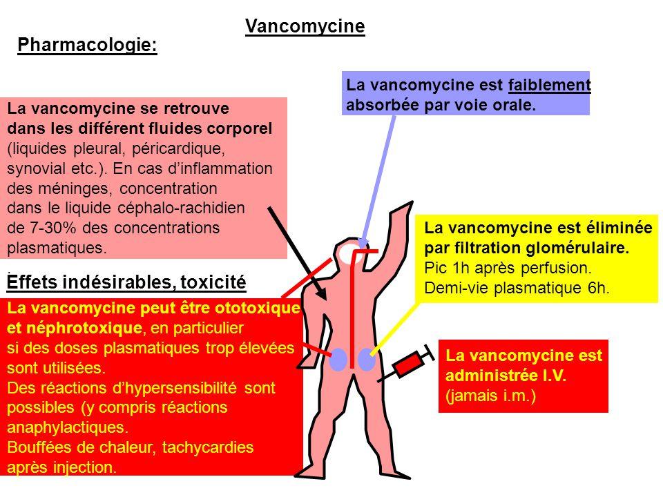 La vancomycine se retrouve dans les différent fluides corporel (liquides pleural, péricardique, synovial etc.). En cas d'inflammation des méninges, co