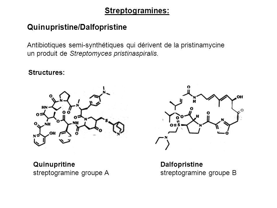 Streptogramines: Quinupristine/Dalfopristine Antibiotiques semi-synthétiques qui dérivent de la pristinamycine un produit de Streptomyces pristinaspir