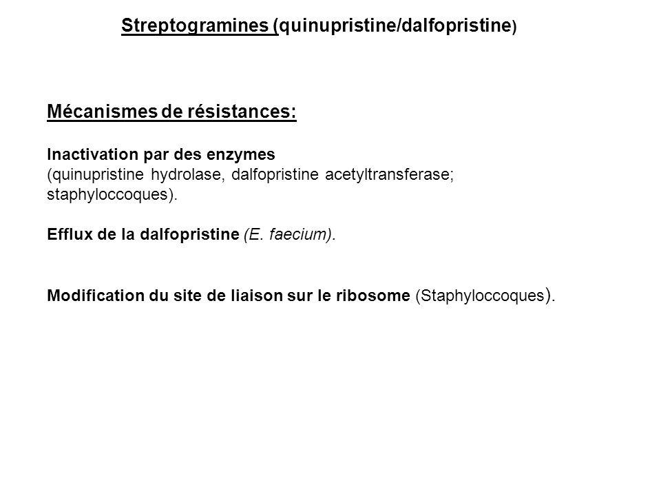 Mécanismes de résistances: Inactivation par des enzymes (quinupristine hydrolase, dalfopristine acetyltransferase; staphyloccoques). Efflux de la dalf