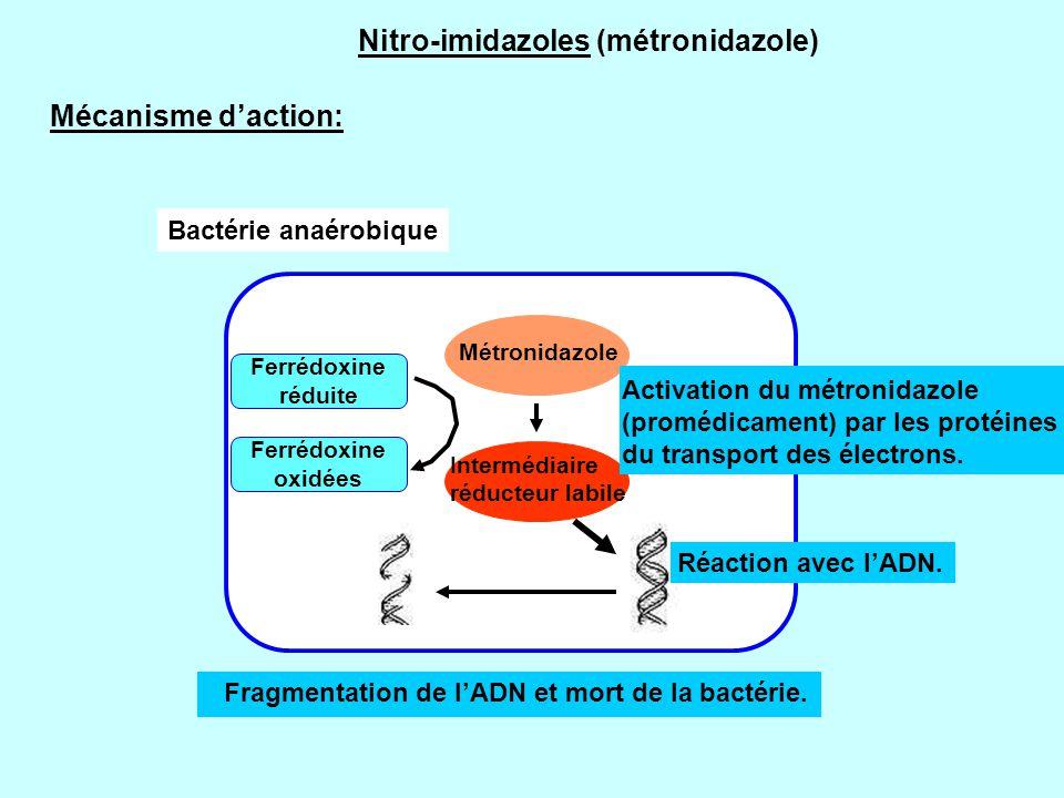 Ferrédoxine réduite Ferrédoxine oxidées Métronidazole Intermédiaire réducteur labile Fragmentation de l'ADN et mort de la bactérie. Réaction avec l'AD