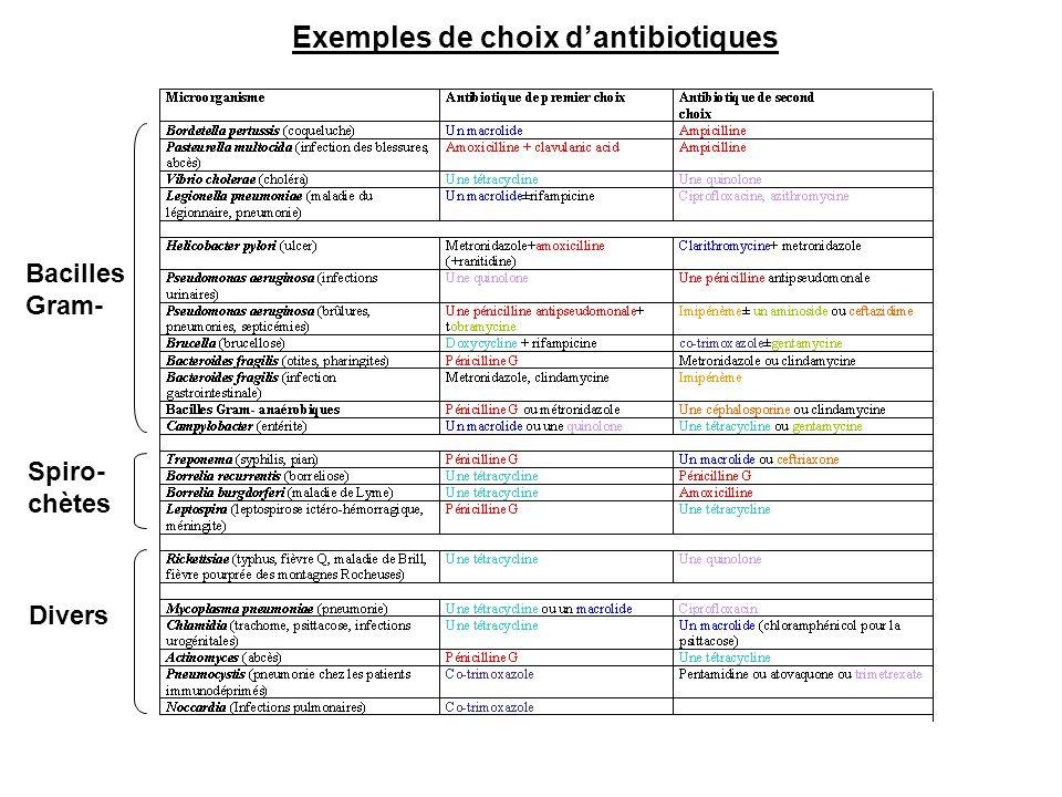 Bacilles Gram- Spiro- chètes Divers Exemples de choix d'antibiotiques