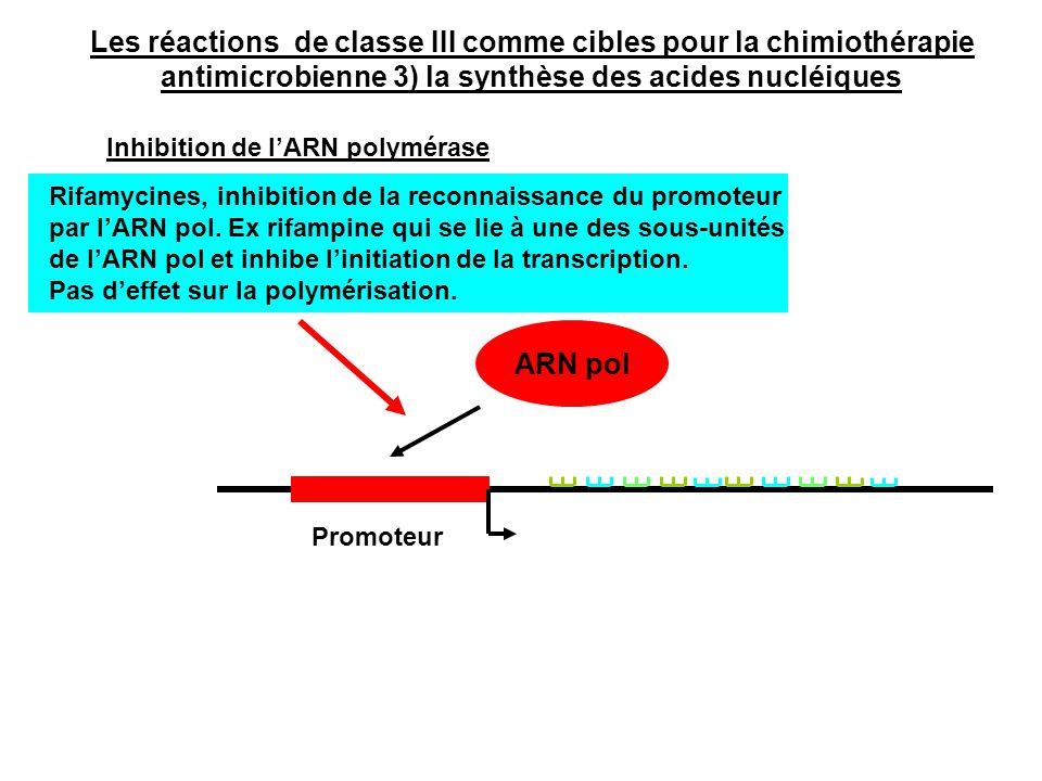 Rifamycines, inhibition de la reconnaissance du promoteur par l'ARN pol. Ex rifampine qui se lie à une des sous-unités de l'ARN pol et inhibe l'initia