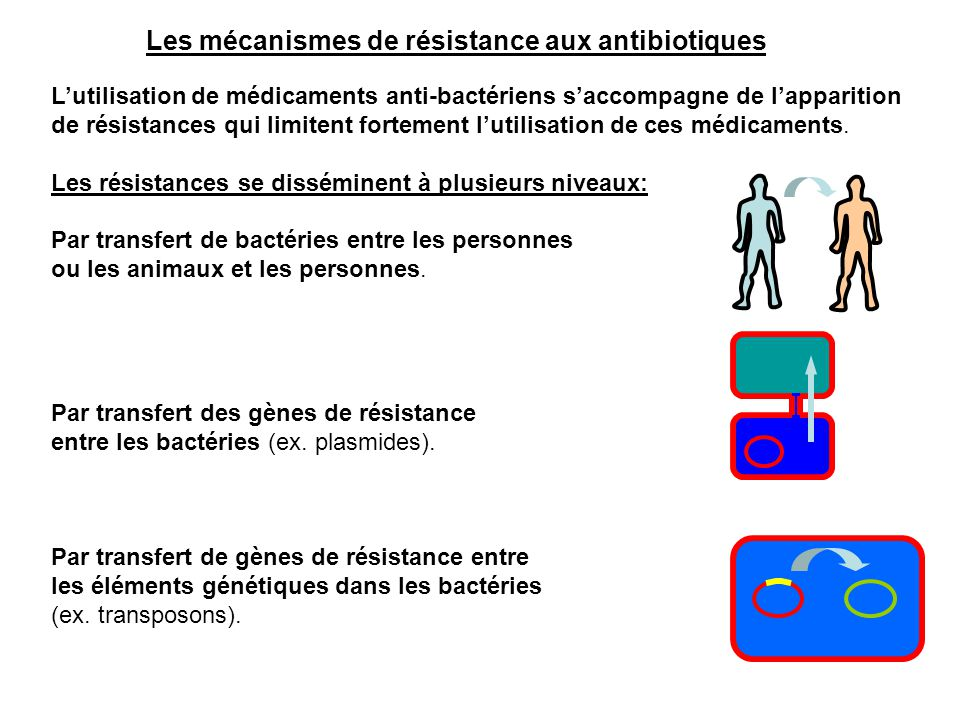 L'utilisation de médicaments anti-bactériens s'accompagne de l'apparition de résistances qui limitent fortement l'utilisation de ces médicaments. Les