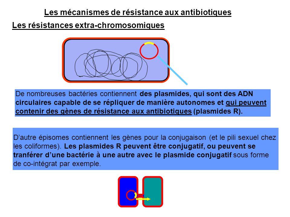 Les mécanismes de résistance aux antibiotiques Les résistances extra-chromosomiques De nombreuses bactéries contiennent des plasmides, qui sont des AD