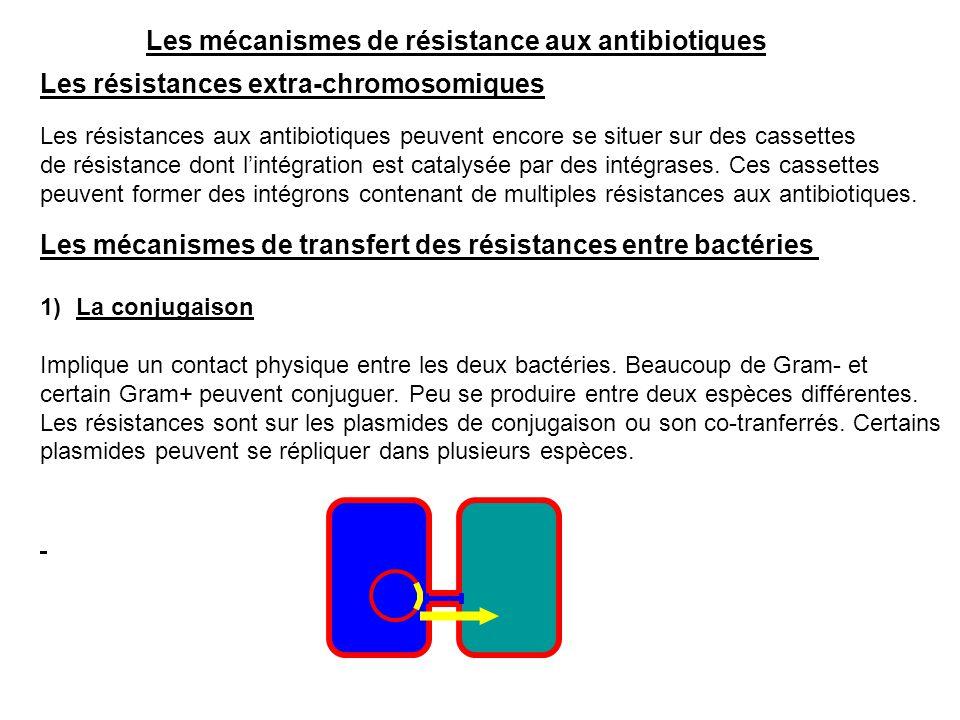 Les mécanismes de résistance aux antibiotiques Les résistances extra-chromosomiques Les résistances aux antibiotiques peuvent encore se situer sur des