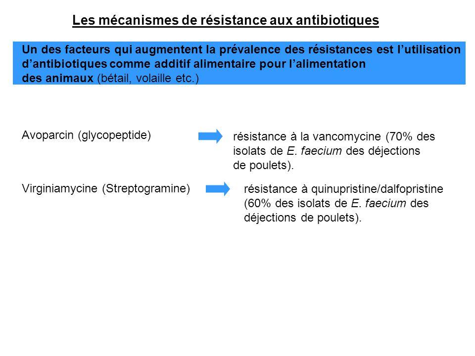 Les mécanismes de résistance aux antibiotiques Un des facteurs qui augmentent la prévalence des résistances est l'utilisation d'antibiotiques comme ad