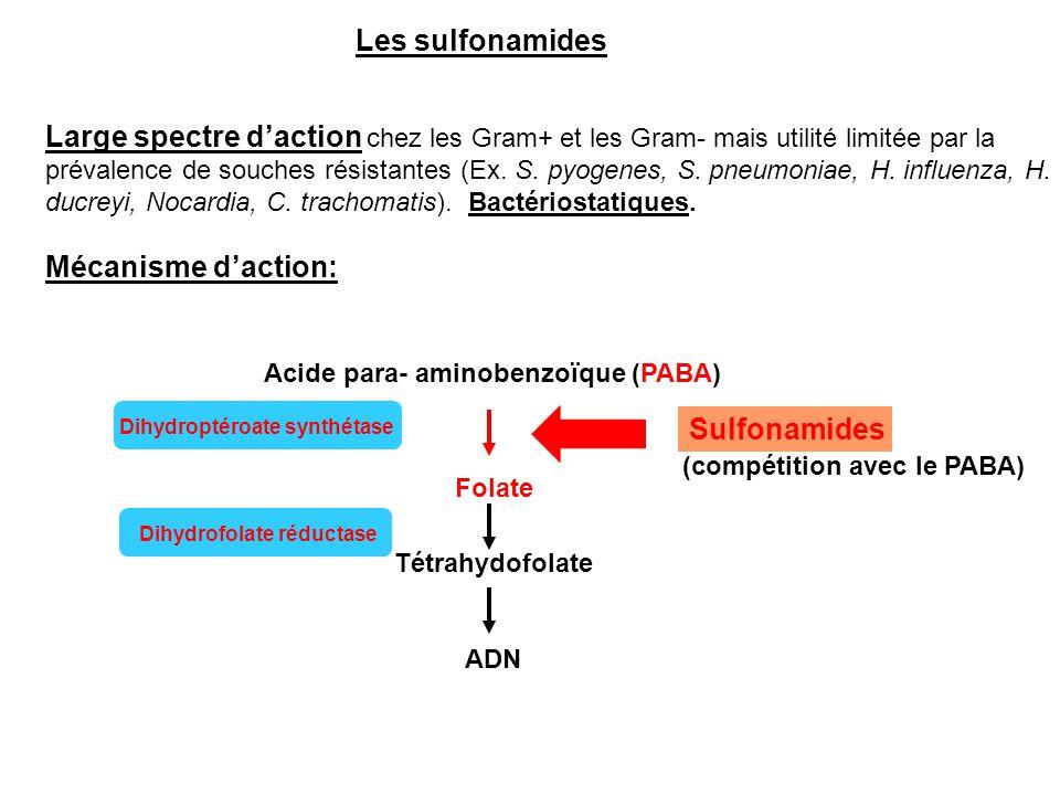 Les sulfonamides Large spectre d'action chez les Gram+ et les Gram- mais utilité limitée par la prévalence de souches résistantes (Ex. S. pyogenes, S.