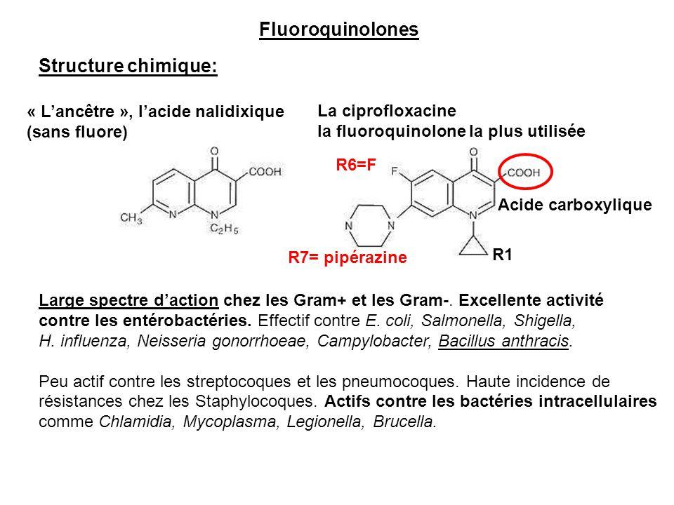 Fluoroquinolones Structure chimique: « L'ancêtre », l'acide nalidixique (sans fluore) La ciprofloxacine la fluoroquinolone la plus utilisée Large spec