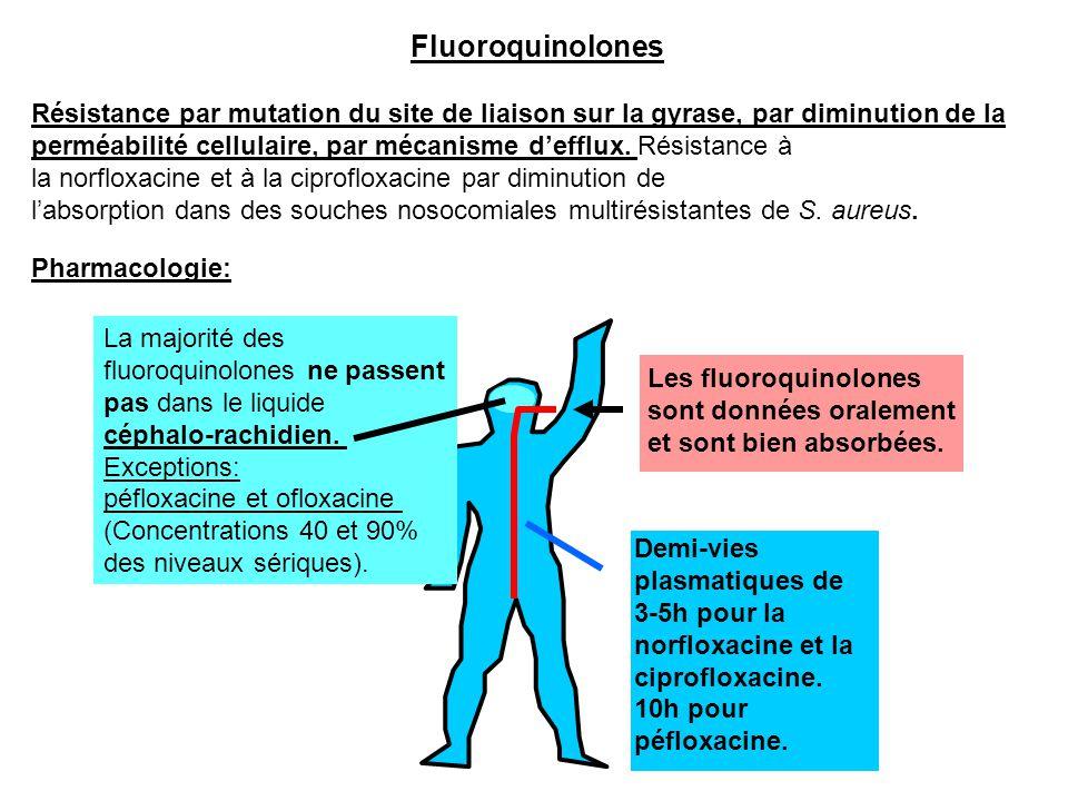 Fluoroquinolones Demi-vies plasmatiques de 3-5h pour la norfloxacine et la ciprofloxacine. 10h pour péfloxacine. Résistance par mutation du site de li
