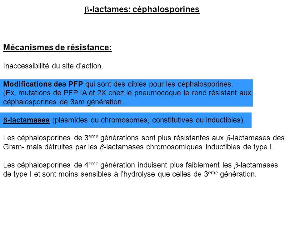 Mécanismes de résistance: Inaccessibilité du site d'action. Modifications des PFP qui sont des cibles pour les céphalosporines. (Ex. mutations de PFP
