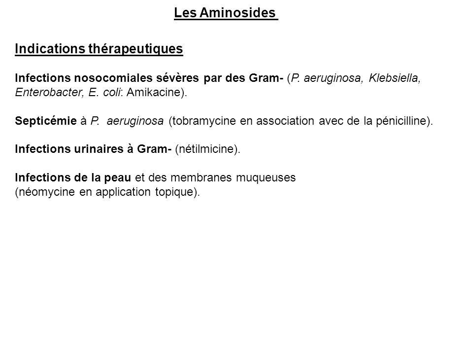 Les Aminosides Indications thérapeutiques Infections nosocomiales sévères par des Gram- (P. aeruginosa, Klebsiella, Enterobacter, E. coli: Amikacine).