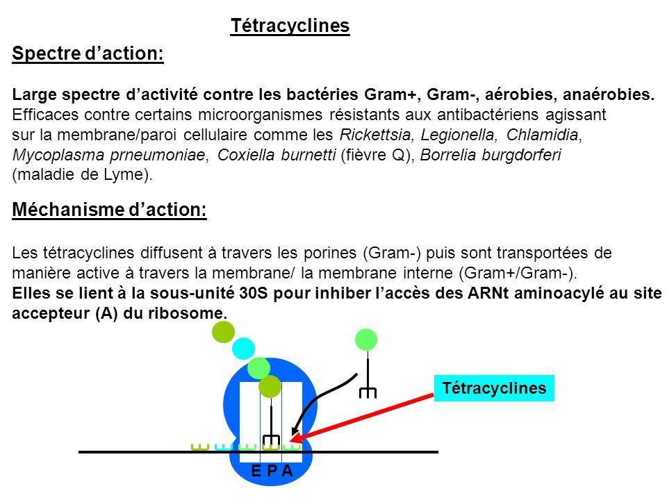 Tétracyclines Spectre d'action: Large spectre d'activité contre les bactéries Gram+, Gram-, aérobies, anaérobies. Efficaces contre certains microorgan
