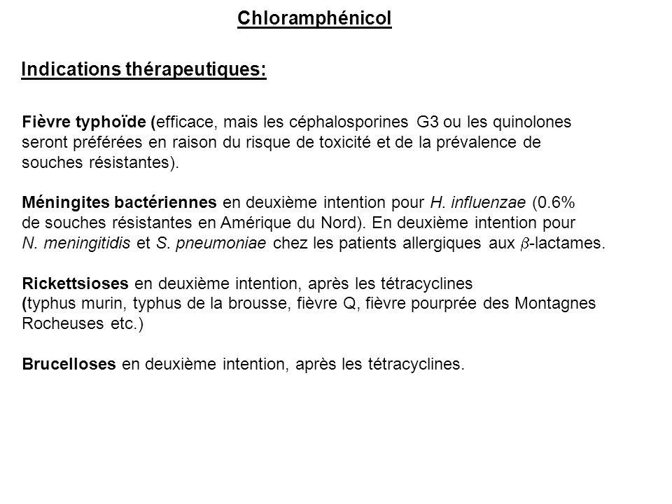 Indications thérapeutiques: Fièvre typhoïde (efficace, mais les céphalosporines G3 ou les quinolones seront préférées en raison du risque de toxicité