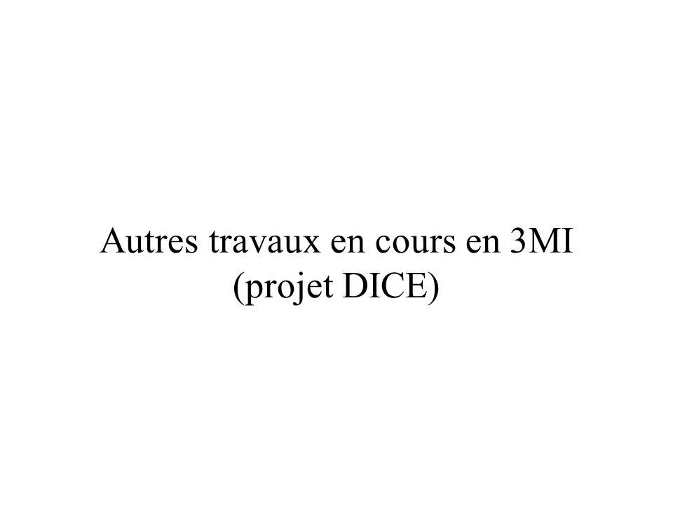 Autres travaux en cours en 3MI (projet DICE)
