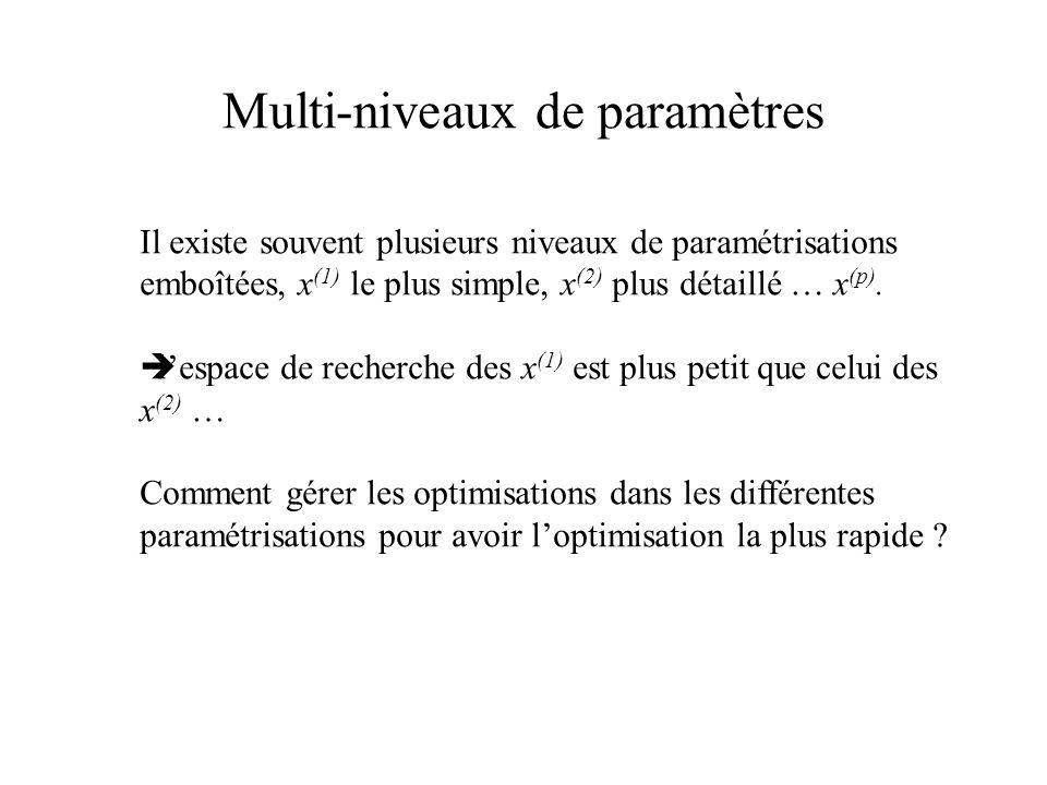 Multi-niveaux de paramètres Il existe souvent plusieurs niveaux de paramétrisations emboîtées, x (1) le plus simple, x (2) plus détaillé … x (p).  l'