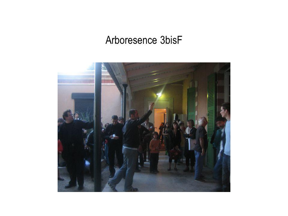 Arboresence 3bisF