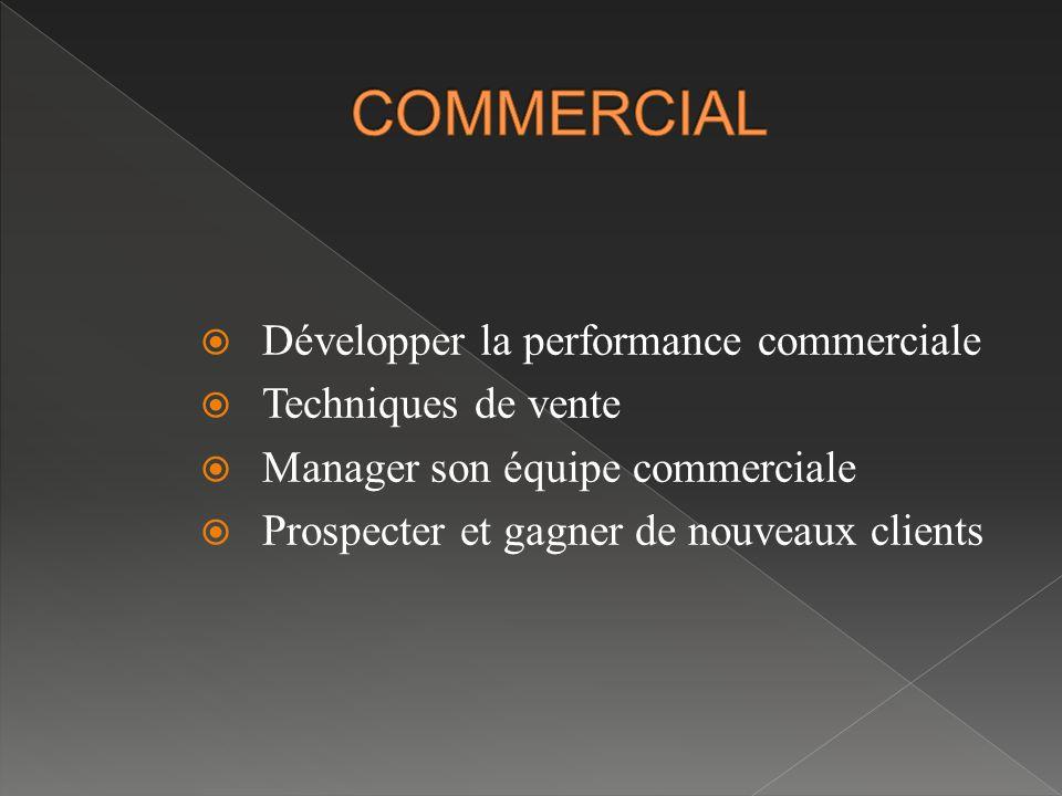  Développer la performance commerciale  Techniques de vente  Manager son équipe commerciale  Prospecter et gagner de nouveaux clients