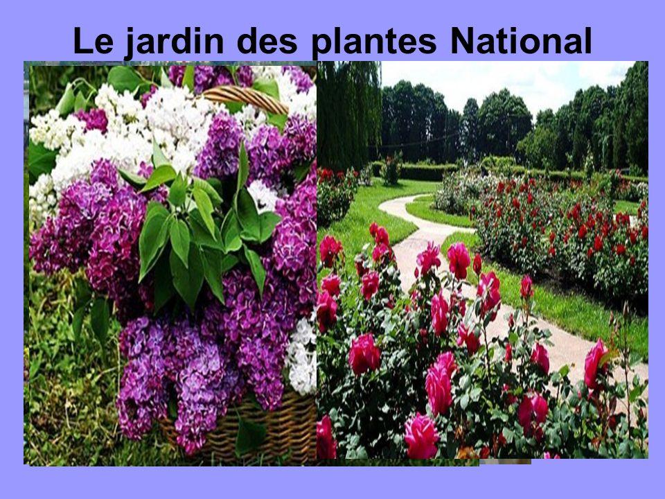 Le jardin des plantes National