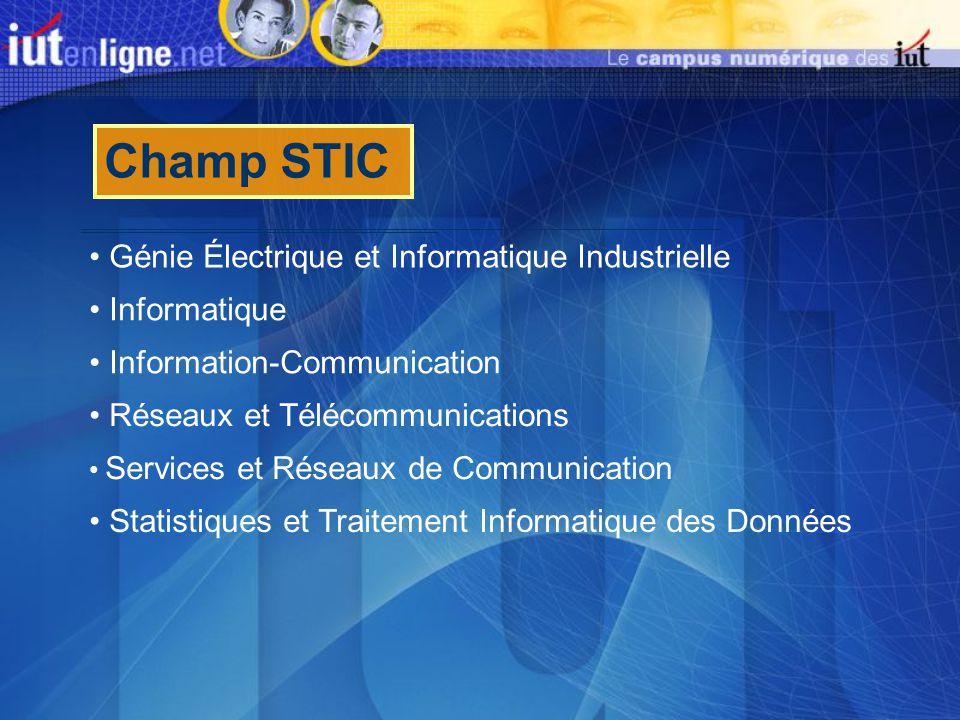 Champ STIC Génie Électrique et Informatique Industrielle Réseaux et Télécommunications Services et Réseaux de Communication Information-Communication