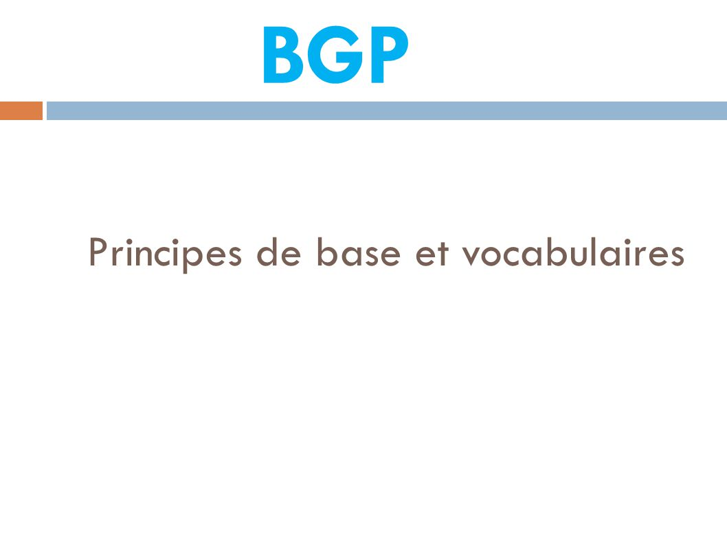 Principes de base et vocabulaires BGP