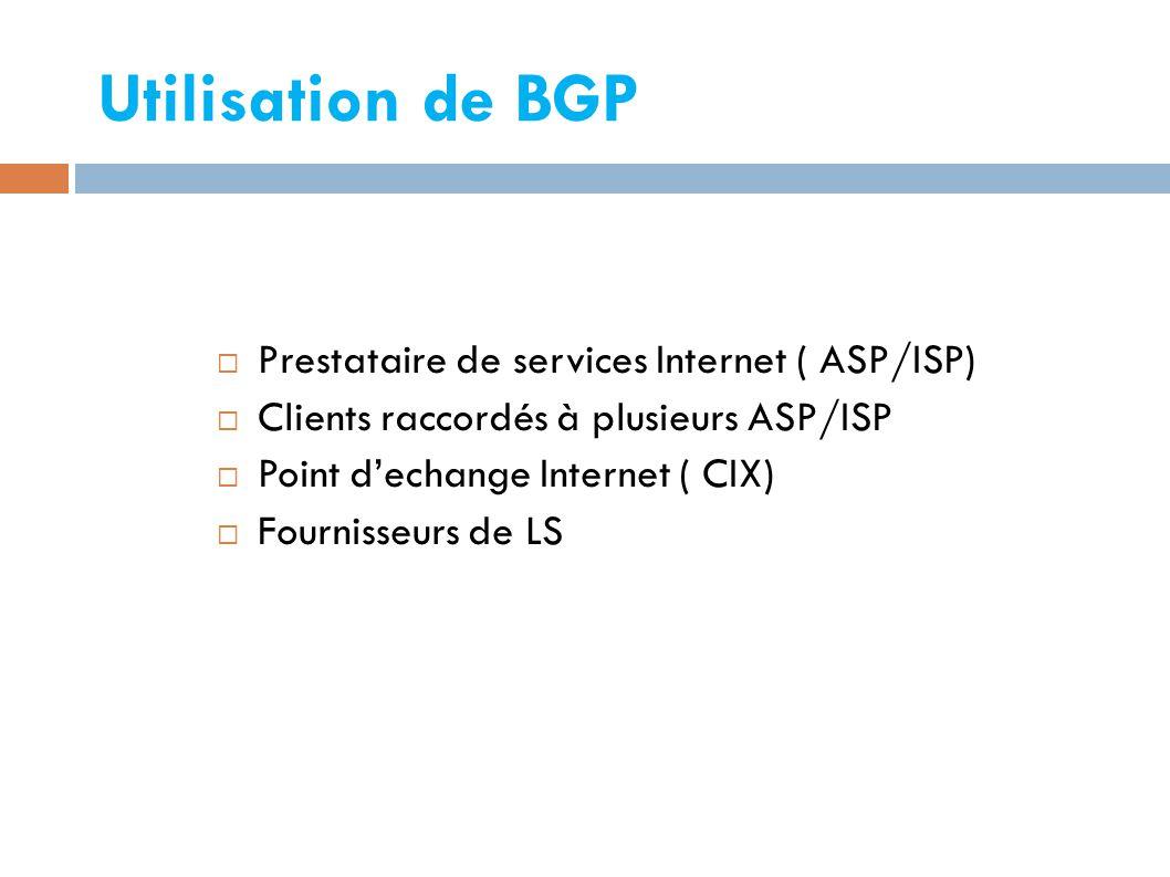 Utilisation de BGP  Prestataire de services Internet ( ASP/ISP)  Clients raccordés à plusieurs ASP/ISP  Point d'echange Internet ( CIX)  Fournisseurs de LS