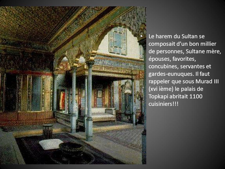 Le harem du Sultan se composait d'un bon millier de personnes, Sultane mère, épouses, favorites, concubines, servantes et gardes-eunuques.