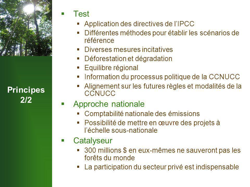 Principes 2/2  Test  Application des directives de l'IPCC  Différentes méthodes pour établir les scénarios de référence  Diverses mesures incitatives  Déforestation et dégradation  Equilibre régional  Information du processus politique de la CCNUCC  Alignement sur les futures règles et modalités de la CCNUCC  Approche nationale  Comptabilité nationale des émissions  Possibilité de mettre en œuvre des projets à l'échelle sous-nationale  Catalyseur  300 millions $ en eux-mêmes ne sauveront pas les forêts du monde  La participation du secteur privé est indispensable