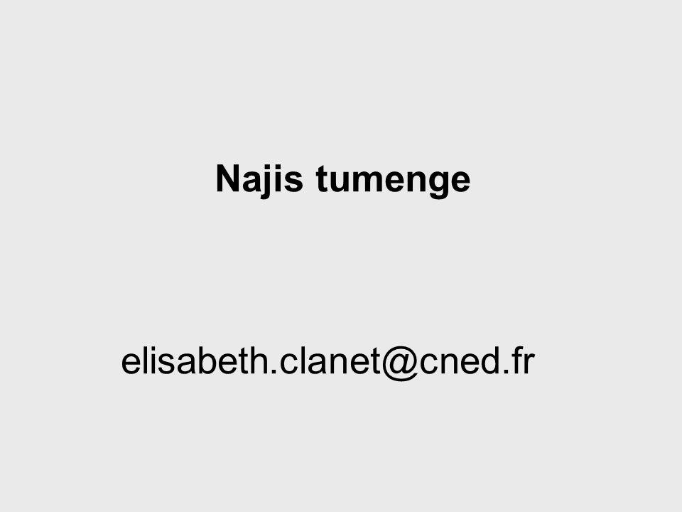 Najis tumenge elisabeth.clanet@cned.fr