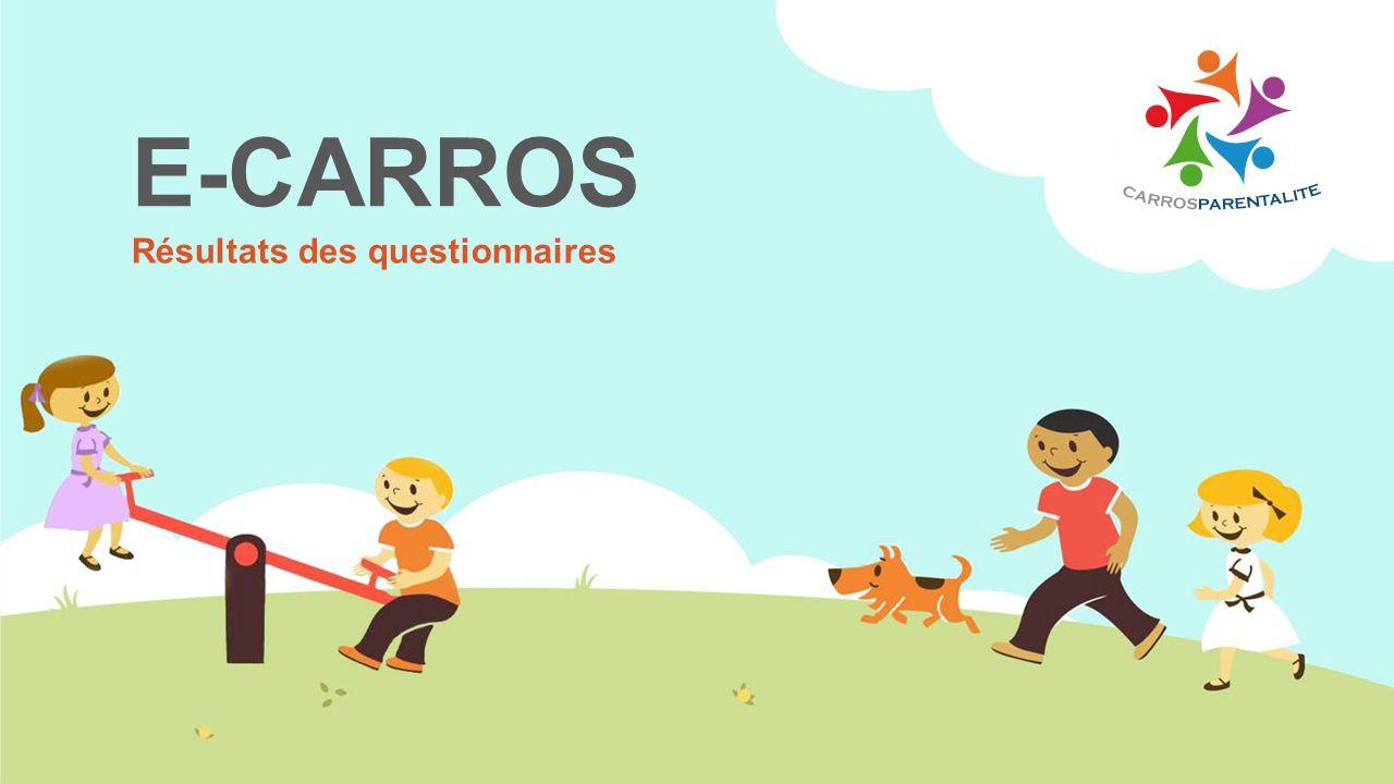 E-CARROS Résultats des questionnaires