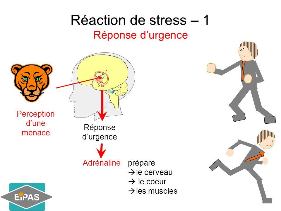 Réaction de stress – 1 Réponse d'urgence  vigilance  fréquence cardiaque  Pression artérielle  Oxygénation des muscles  Oxygénation dans le système digestif Le corps est prêt à un effort physique Agir