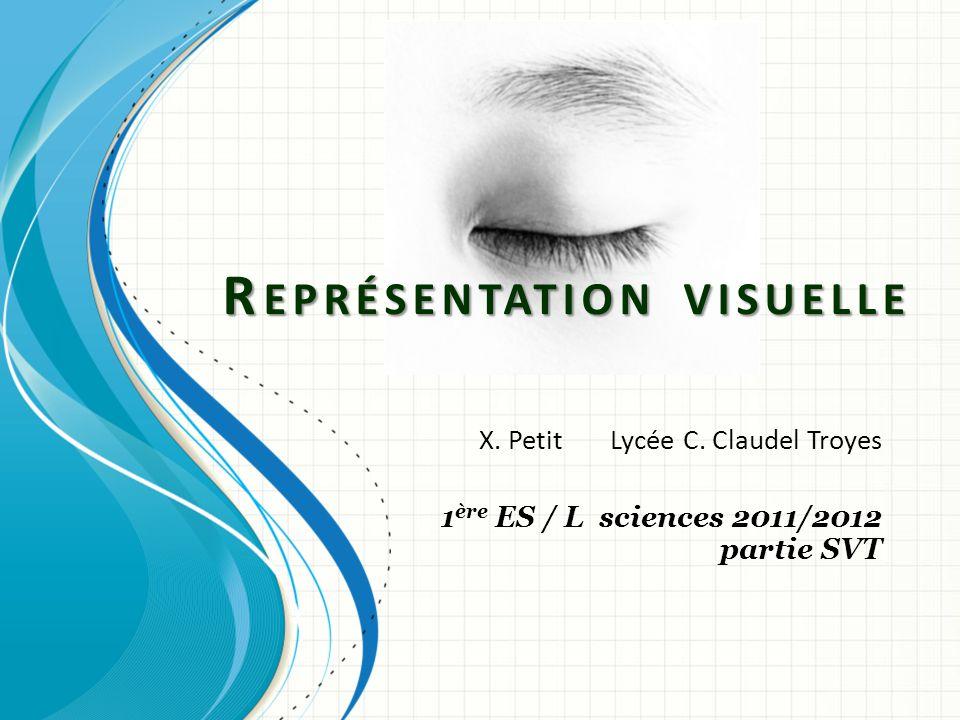 R EPRÉSENTATION VISUELLE X. Petit Lycée C. Claudel Troyes 1 ère ES / L sciences 2011/2012 partie SVT