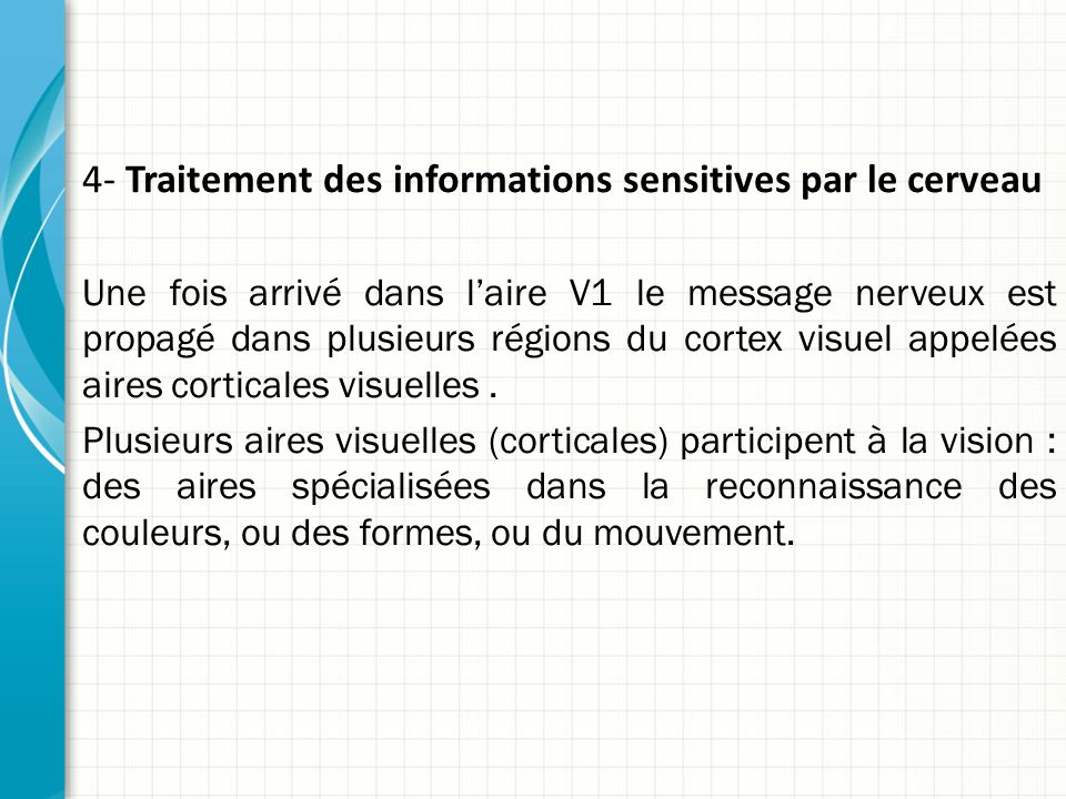 4- Traitement des informations sensitives par le cerveau Une fois arrivé dans l'aire V1 le message nerveux est propagé dans plusieurs régions du cortex visuel appelées aires corticales visuelles.
