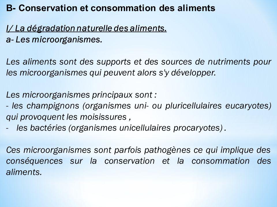 B- Conservation et consommation des aliments I/ La dégradation naturelle des aliments. a- Les microorganismes. Les aliments sont des supports et des s