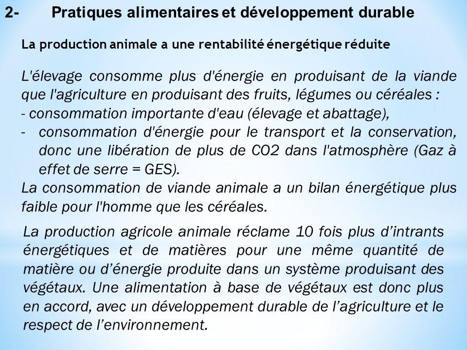 Dans un agrosystème, le rendement global de la production comparé aux consommations de matière et d'énergie conditionne le choix d'une alimentation d'origine animale ou végétale, et cela dans une perspective de développement durable