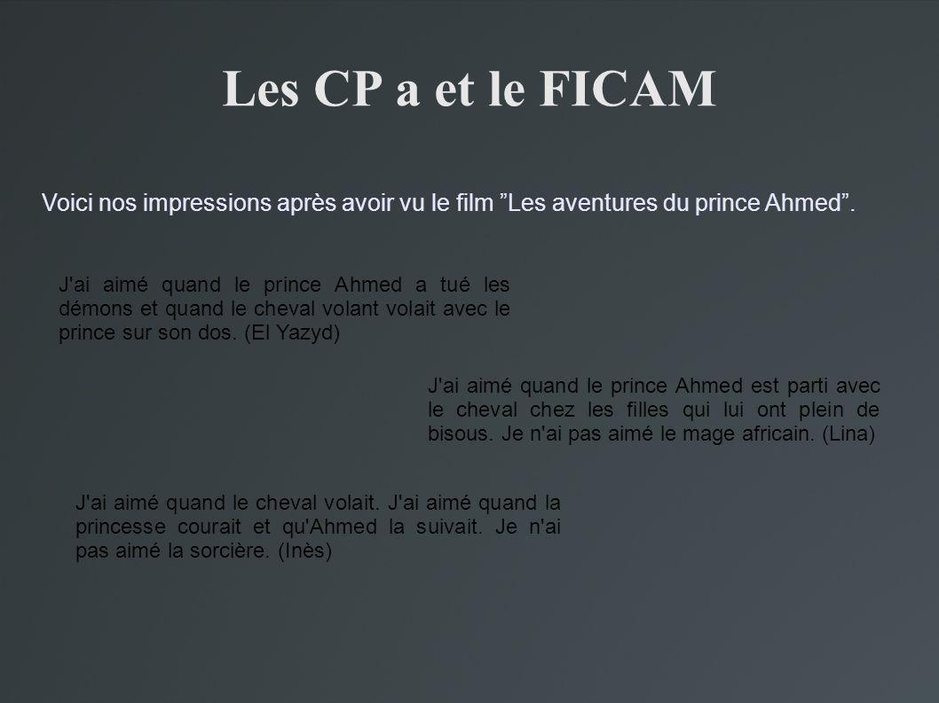 Les CP a et le FICAM Voici nos impressions après avoir vu le film Les aventures du prince Ahmed .