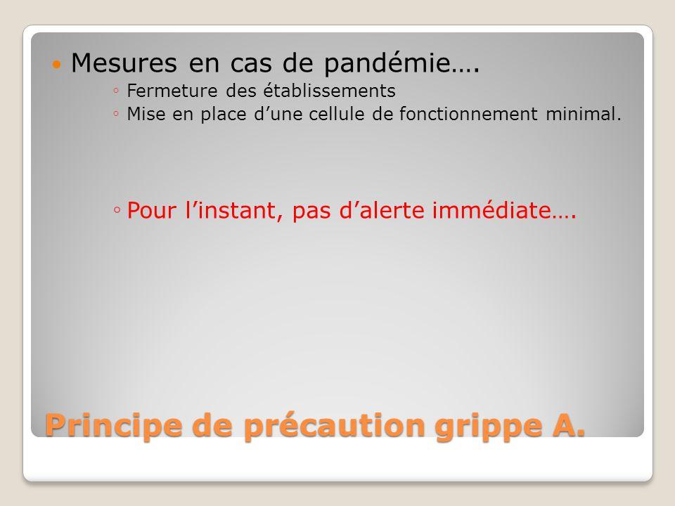 Principe de précaution grippe A. Mesures en cas de pandémie…. ◦ Fermeture des établissements ◦ Mise en place d'une cellule de fonctionnement minimal.