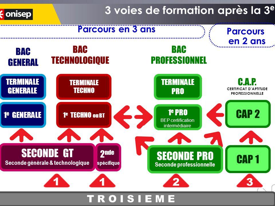 La voie professio T R O I S I E M E SECONDE GT Seconde générale & technologique CAP 1 CAP 2 1 23 BAC GENERAL BAC TECHNOLOGIQUE BAC PROFESSIONNEL C.A.P