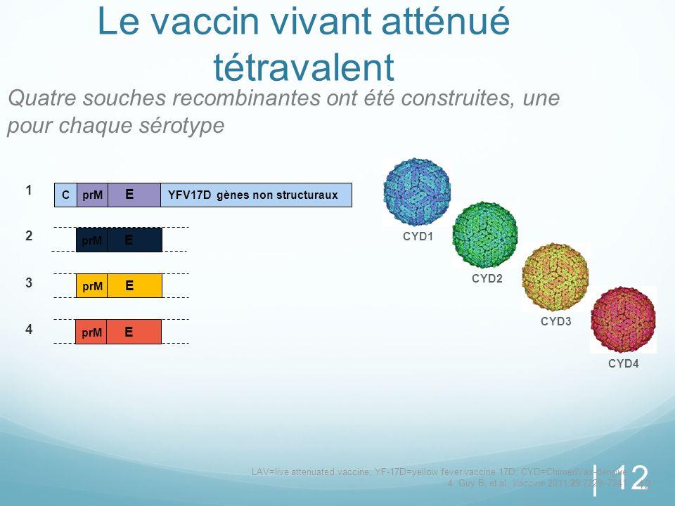 | 12 Le vaccin vivant atténué tétravalent Quatre souches recombinantes ont été construites, une pour chaque sérotype 12 prM E 1 2 3 4 C YFV17D gènes n