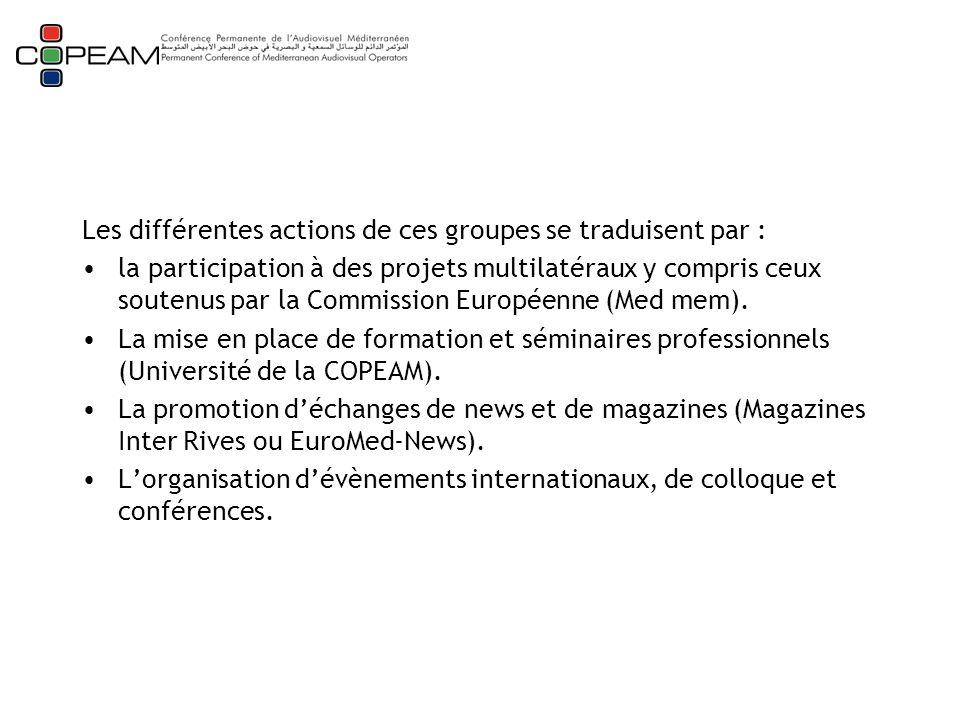 Les différentes actions de ces groupes se traduisent par : la participation à des projets multilatéraux y compris ceux soutenus par la Commission Européenne (Med mem).