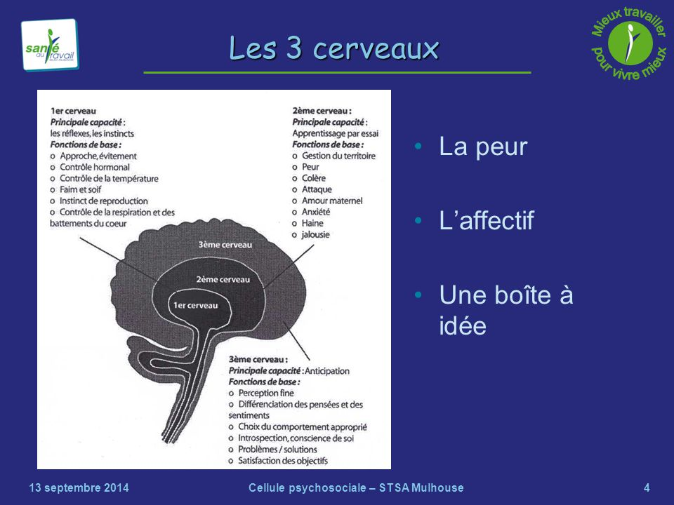 4 Les 3 cerveaux La peur L'affectif Une boîte à idée 13 septembre 2014Cellule psychosociale – STSA Mulhouse