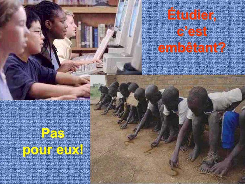 Étudier, c'est embêtant? Pas pour eux!