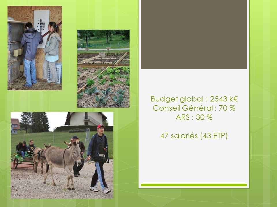Budget global : 2543 k€ Conseil Général : 70 % ARS : 30 % 47 salariés (43 ETP)