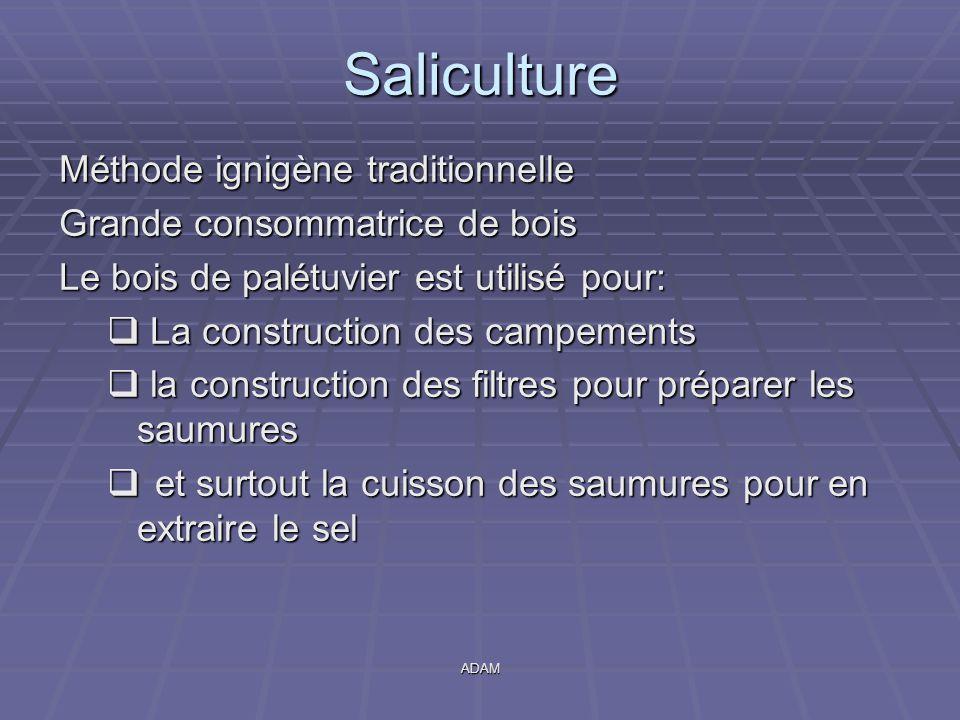 ADAM Saliculture Méthode ignigène traditionnelle Grande consommatrice de bois Le bois de palétuvier est utilisé pour:  La construction des campements