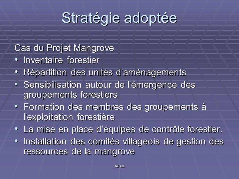 ADAM Stratégie adoptée Cas du Projet Mangrove Inventaire forestier Inventaire forestier Répartition des unités d'aménagements Répartition des unités d