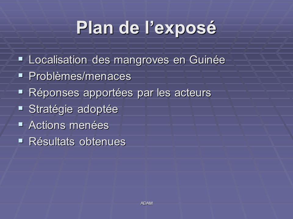 ADAM Plan de l'exposé  Localisation des mangroves en Guinée  Problèmes/menaces  Réponses apportées par les acteurs  Stratégie adoptée  Actions me