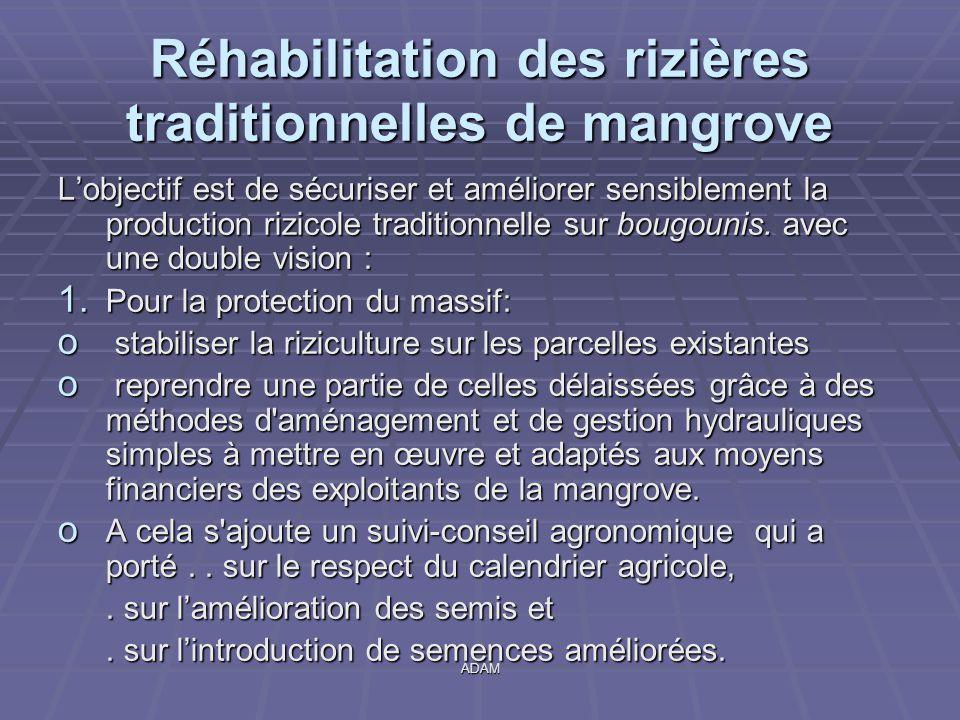ADAM Réhabilitation des rizières traditionnelles de mangrove L'objectif est de sécuriser et améliorer sensiblement la production rizicole traditionnel